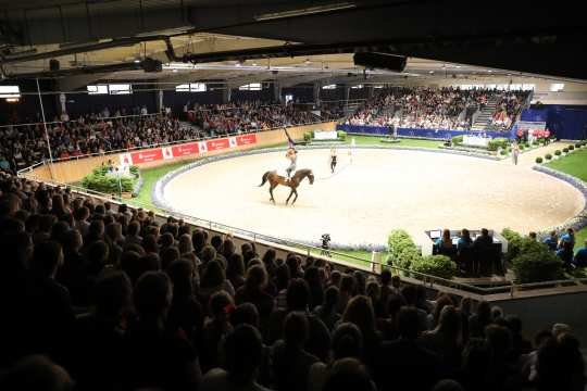Vaulting: Prize of Sparkasse Nations' 2019. Photo: CHIO Aachen/Michael Strauch