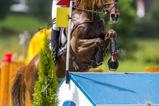 The photo shows Sandra Auffarth riding Opgun Louvo in the DHL Prize at the CHIO Aachen in 2017.  (Photo: CHIO Aachen/Arnd Bronkhorst).