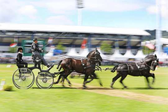 CHIO Aachen 2017 (c) Andreas Steindl