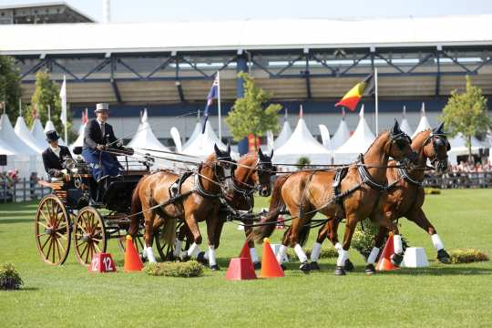 CHIO Aachen 2018 (c) Andreas Steindl