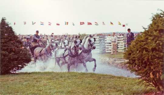 1973 fanden die Fahrprüfungen noch im Hauptstadion statt, erst 1984 entstand das Fahrstadion. Foto: CHIO Aachen Archiv