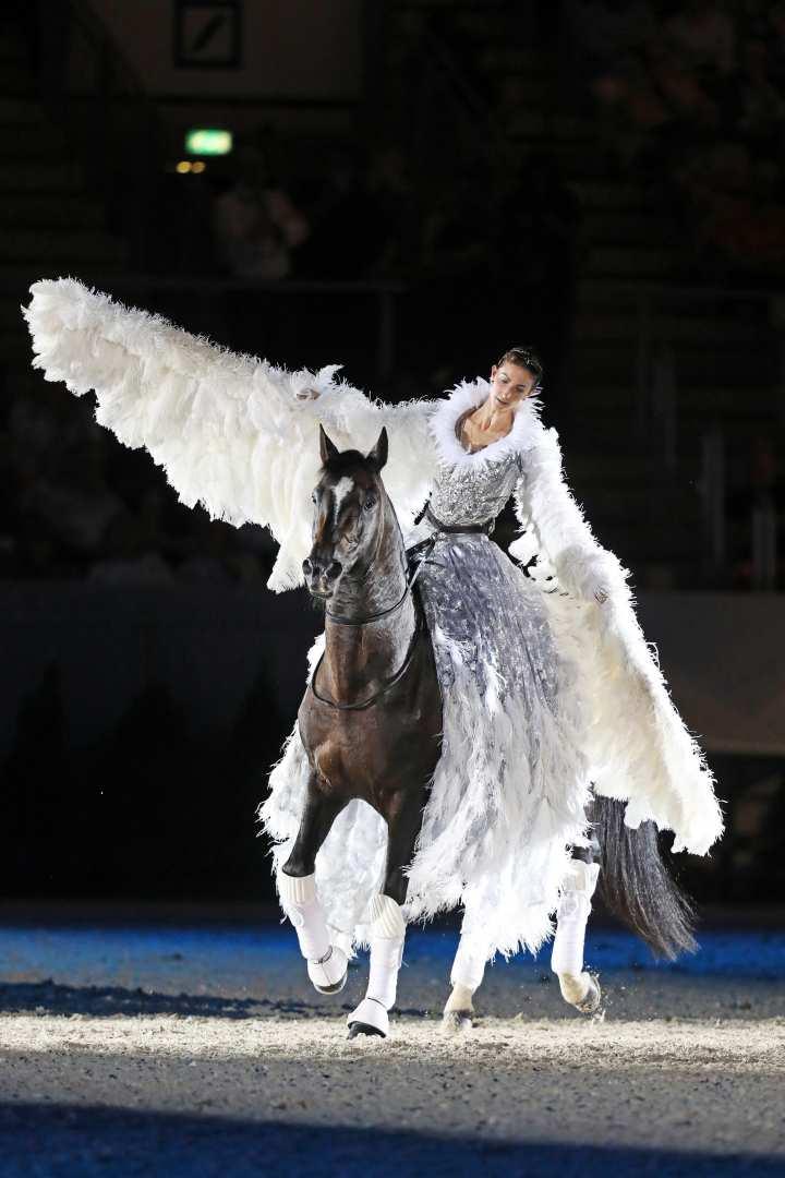 Pferd & Sinfonieim Bild: