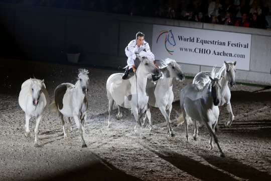 """The photo shows Jean-François Pignon at the """"Horse & Symphony"""" in 2014. The photo can be used copyright-free (Photo: CHIO Aachen/Andreas Steindl)."""