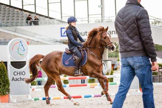 Springtraining mit Otto Becker beim 2. CHIO Aachen-Bloggertreffen. Foto: @fs_bildpoesie/ Franziska Sack