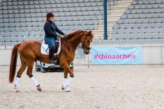 Dressur-Training mit Fabienne Müller-Lütkemeier. Foto: @fs_bildpoesie/ Franziska Sack