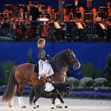 Pferd & Sinfonie
